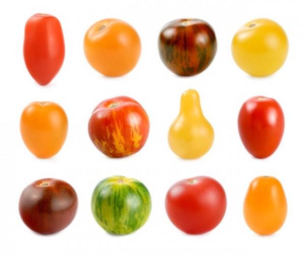 Che cos'è la biodiversità alimentare?
