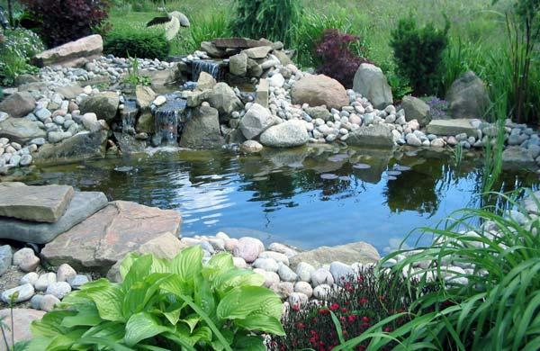 Creare un laghetto in giardino for Laghetto tartarughe inverno