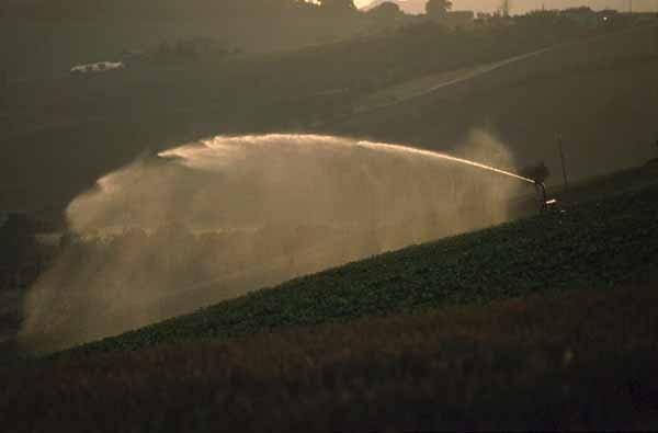 Progettazione Impianto Di Irrigazione Guida Completa