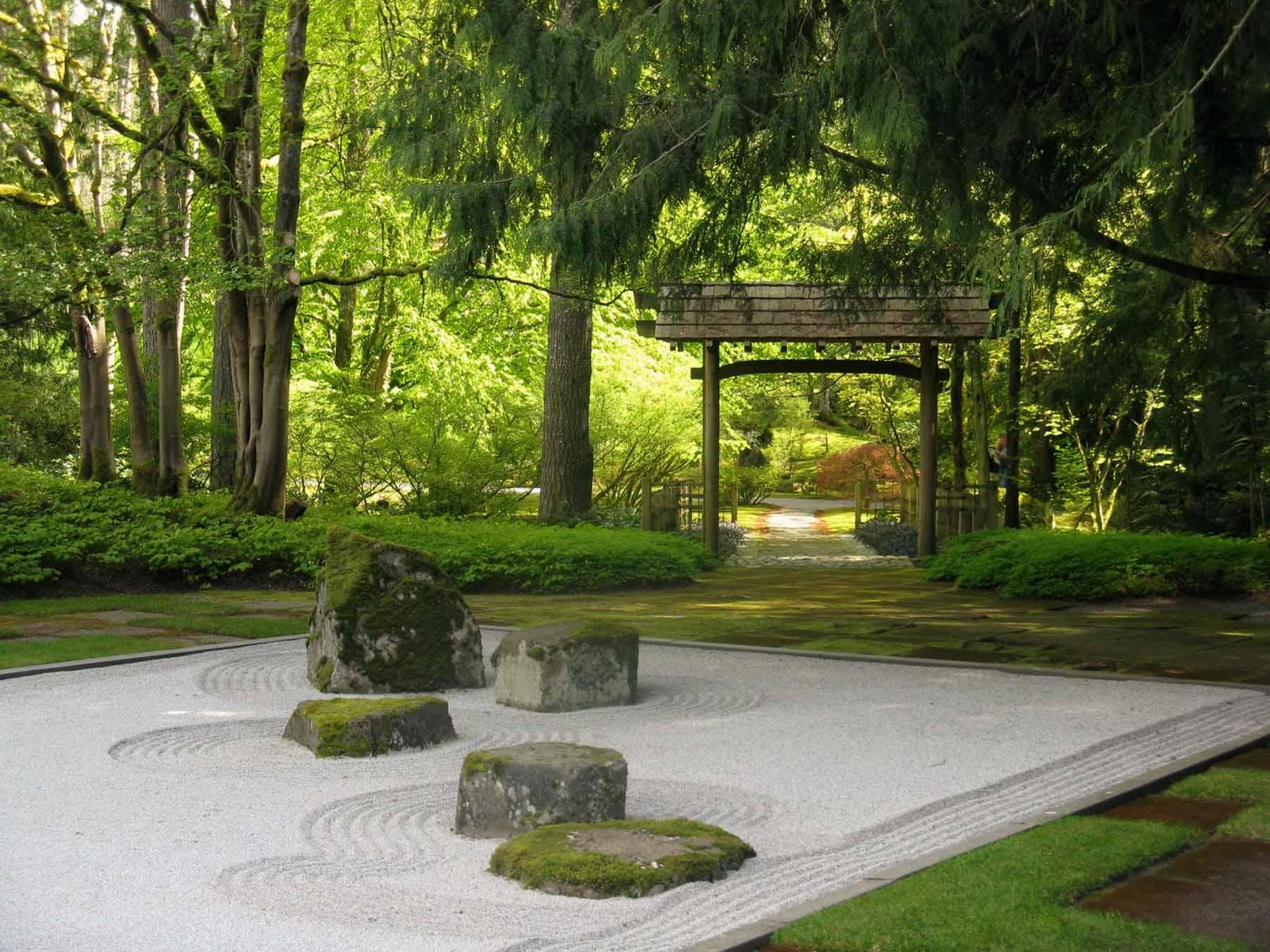 piante per giardino zen come sceglierle. Black Bedroom Furniture Sets. Home Design Ideas