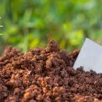 Il compostaggio domestico: come si fa?