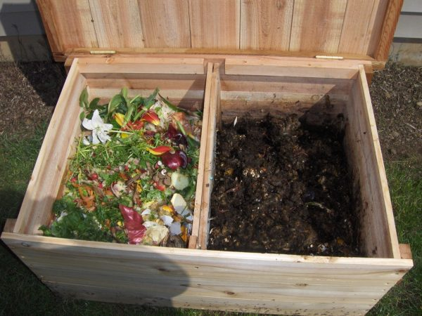 la compostiera verticale